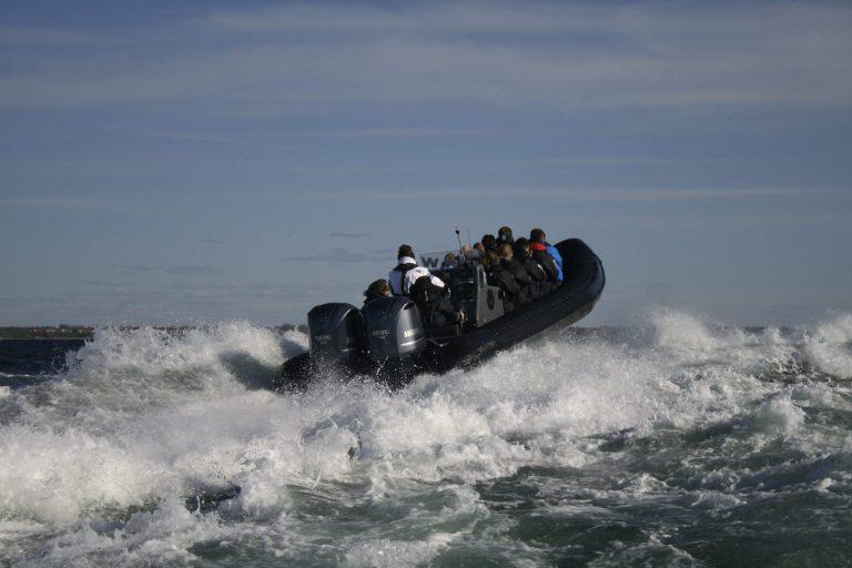 Se Øresund med RIB båden